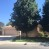 $1650-11015 Lewelling St. Bakersfield, CA 93312 northwest home for rent