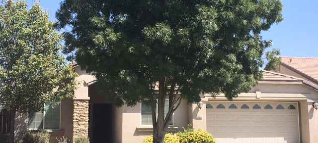 $1595-13420 Ridgeway Meadows Dr., Bakersfield, CA 93314 northwest home for rent